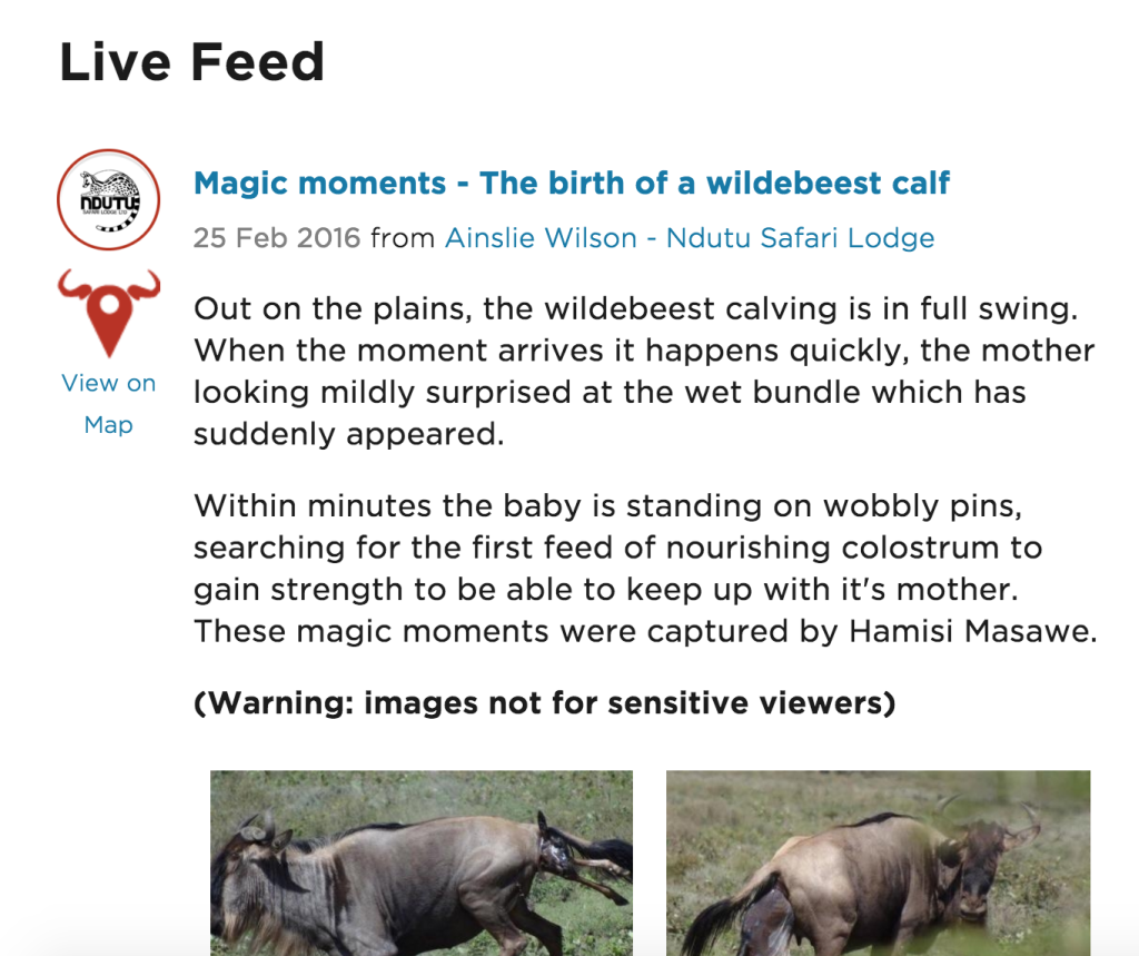 discover africa herd tracker